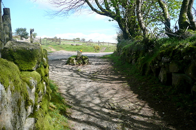 Bridleway towards Jay's Grave