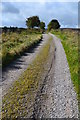 SK1859 : Track west of Pikehall by Neil Theasby