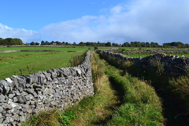 Green lane east of Greenhead, Biggin