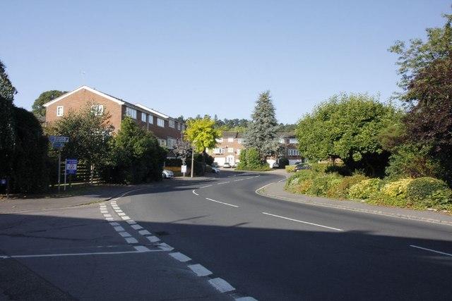 Bend in Kings Road