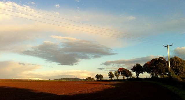 Autumn late afternoon, 1