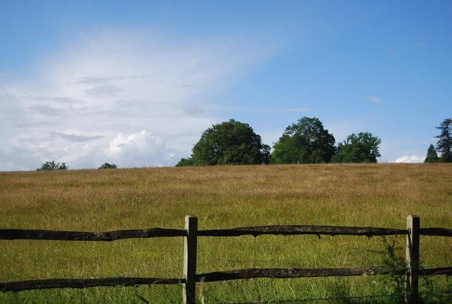 Grassland, Rye Farm