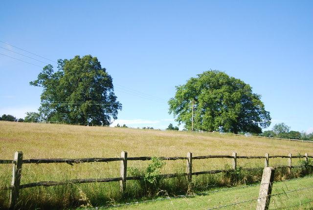 Farmland, Rye Farm