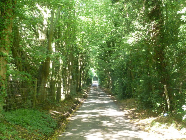 School Lane passing through Horton Wood