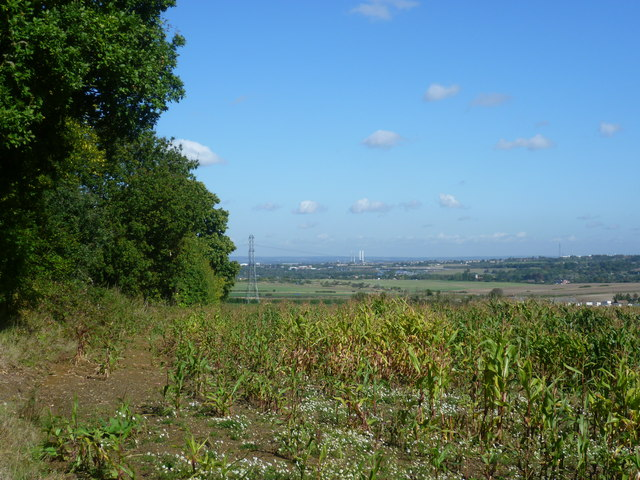 View from alongside Farningham Woods