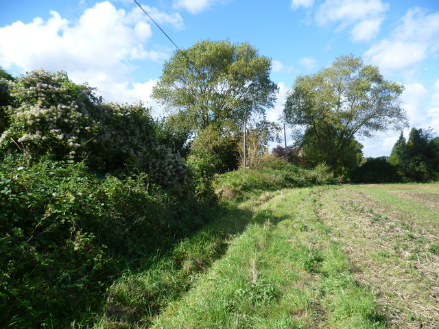 Field alongside Crockenhill Road