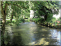 SP1007 : River Coln upstream of Ablington Bridge by Stuart Logan