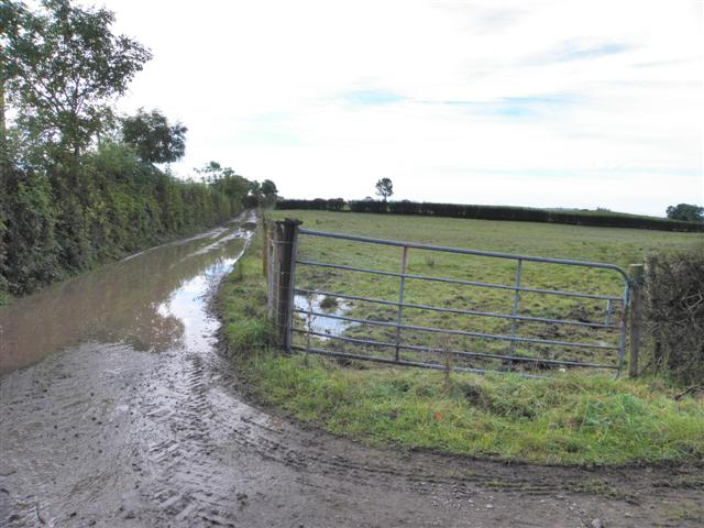 Flooded lane, Moylagh