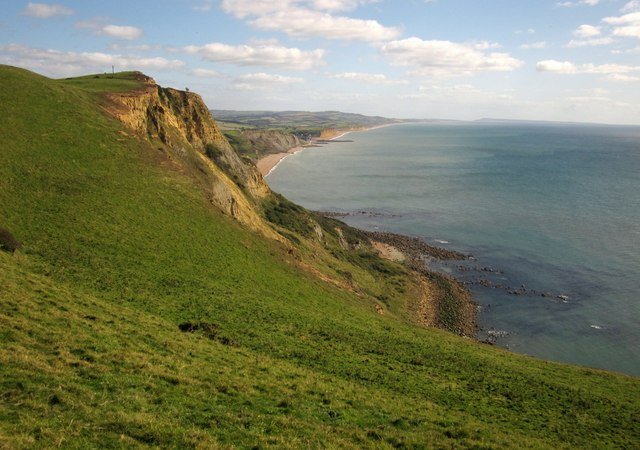 Coast at Thorncombe Beacon