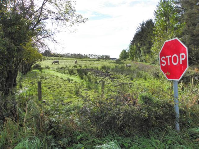 Moylagh Townland