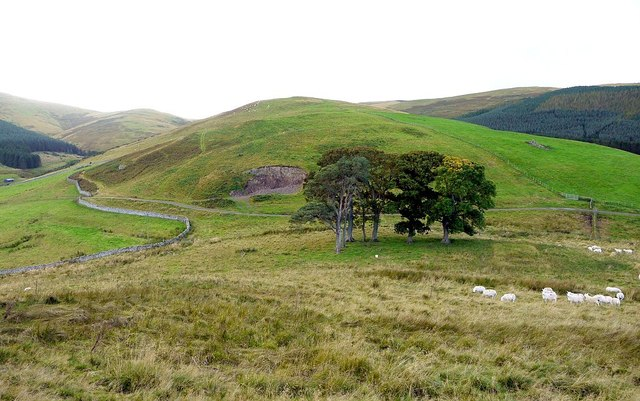 Hill north-west of Trowupburn