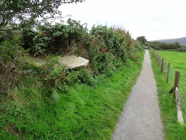 The path to the Pentre Ifan Megalithic Tomb