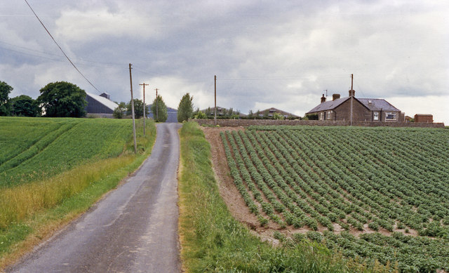 Site of Cuthlie station, 1988