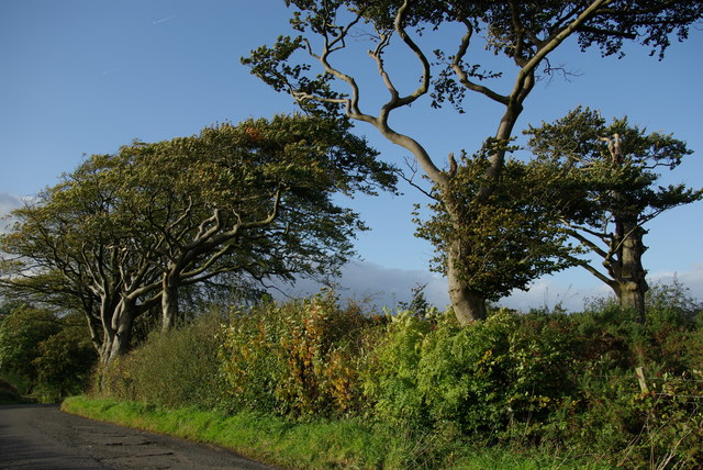 Minor road near Cleeves