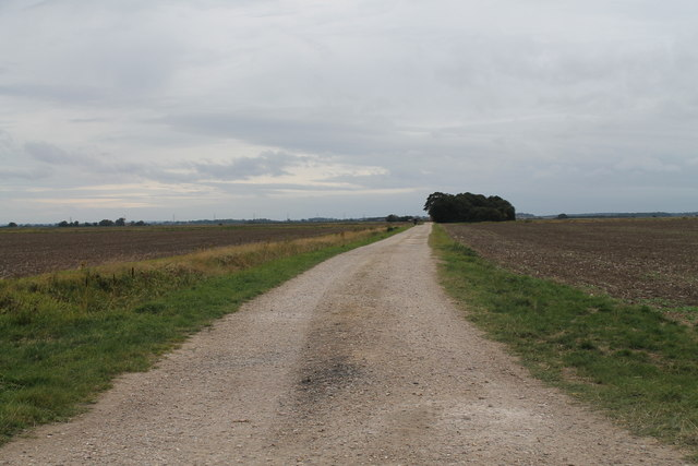 Farm track off Clay Bank (B1395)