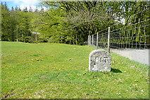 SX7280 : Boundary stone by Graham Horn