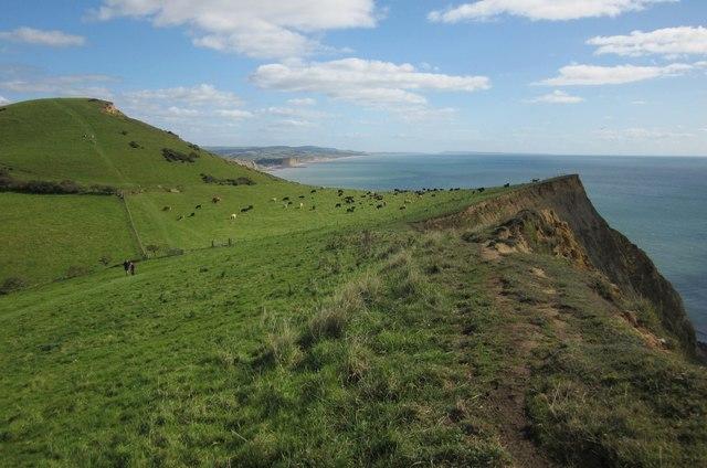 Ridge Cliff