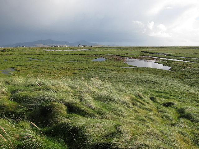 Saltmarsh at Balgarva