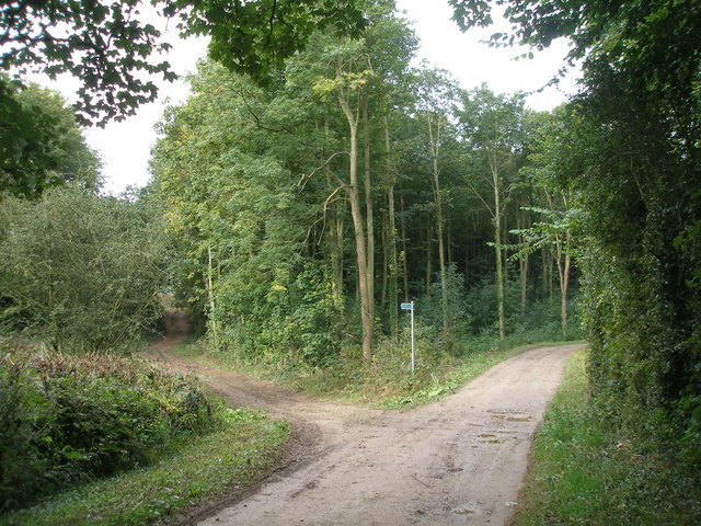 Footpath junction at the end of Park Lane