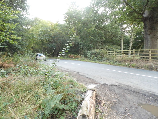 Black Park Road, Iver Heath