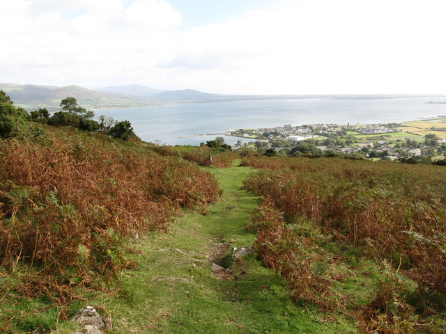 Short cut path from the Tain Way to the centre of Carlingford