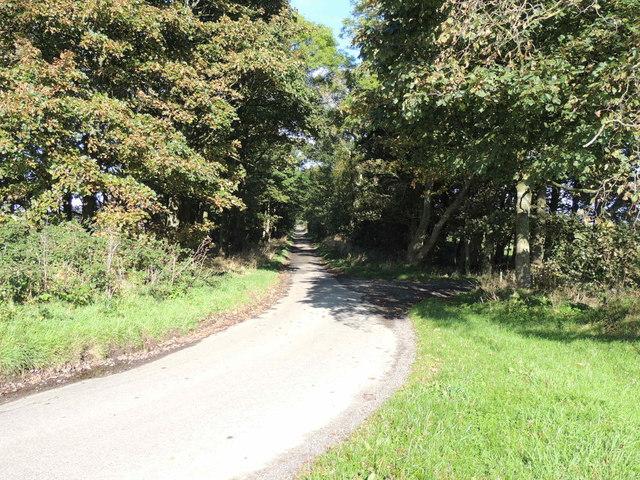 Mull of Galloway Trail near Barnultoch