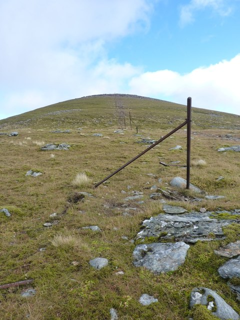 The old boundary fence
