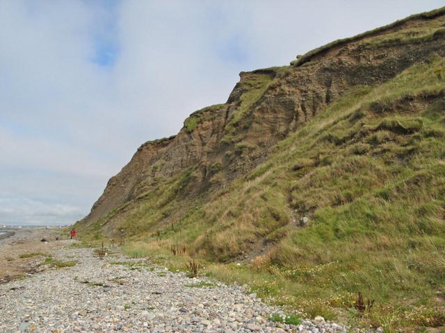 Glacial deposits 1