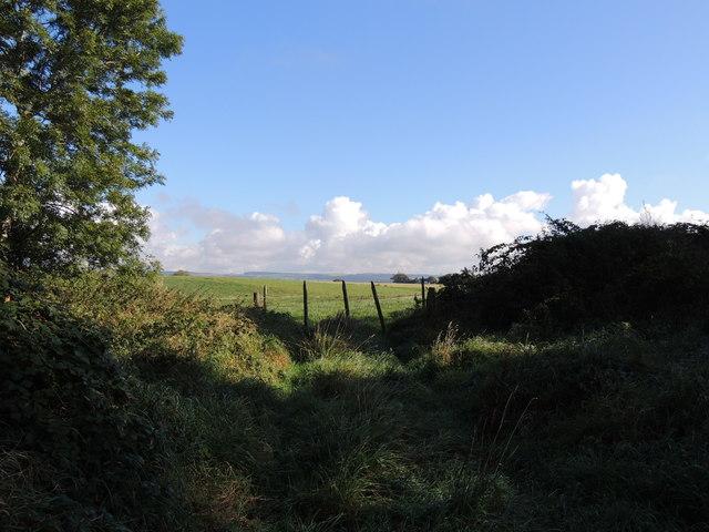 Farmland near Drumdoch