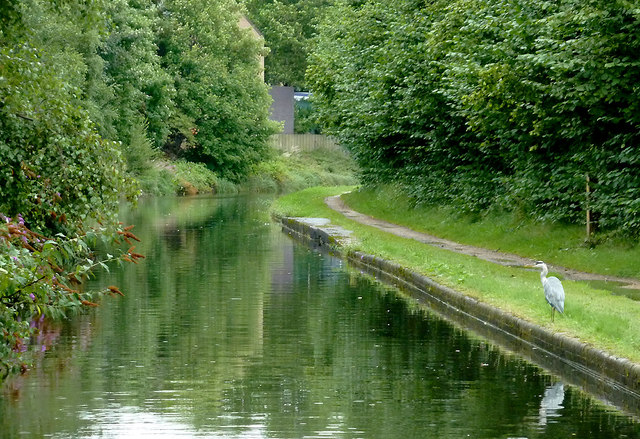 Birmingham and Fazeley Canal near Gravelly Hill, Birmingham