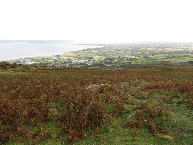The bracken infested slopes above Carlingford