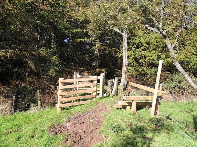 Mull of Galloway Trail at Boreland Wood