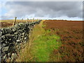 SE0865 : Boundary Wall on Henstones by Chris Heaton