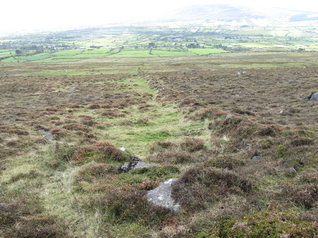 A field boundary on the moorland