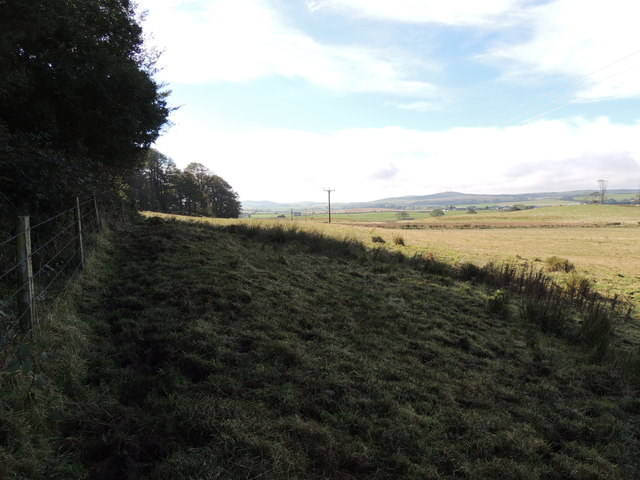 Farmland at Boreland Wood