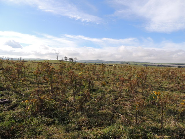 Farmland near Culhorn Mains