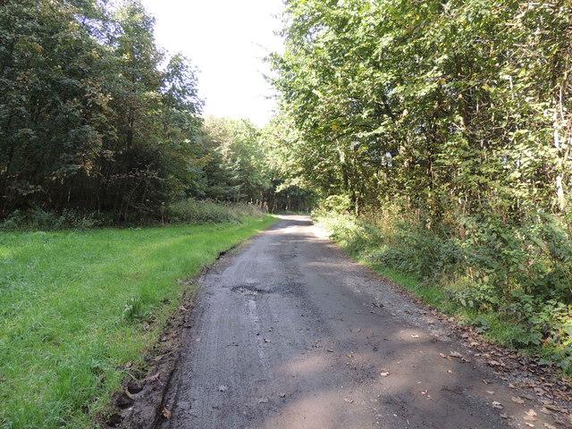 Mull of Galloway Trail in Big Plantation