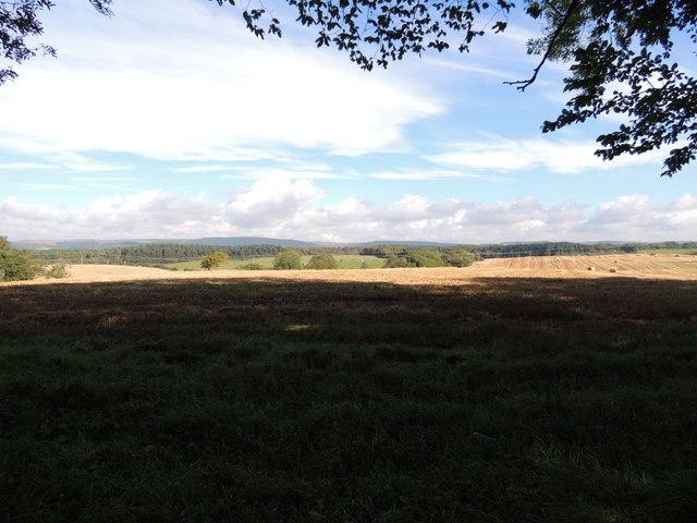 Farmland near Culhorn Parks