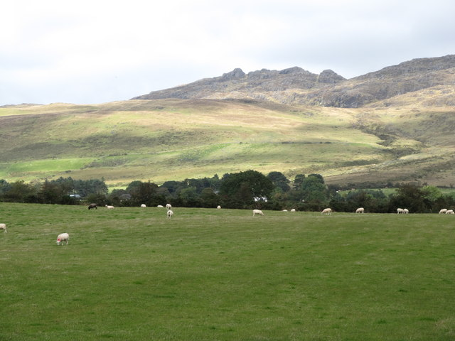 View northwards across sheep grazings towards the Altawillian Valley