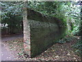 TA2069 : Old wall, Sewerby Hall Gardens by JThomas