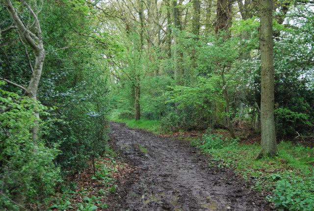 Muddy Wey South Path