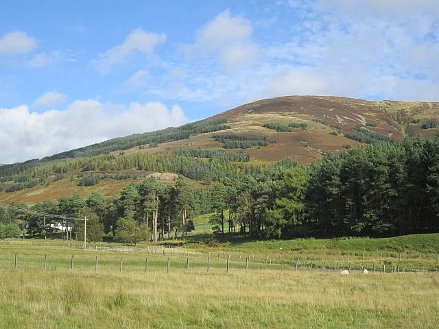 Horse Hope Hill
