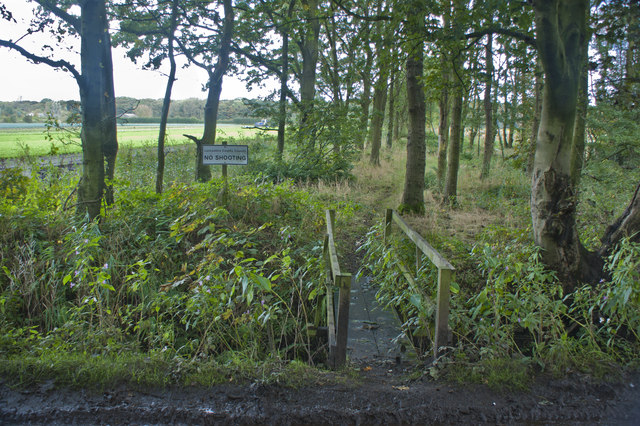 A footbridge off Cabin Lane