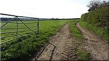 SJ6478 : Field entrance, Gibb Hill by Richard Webb