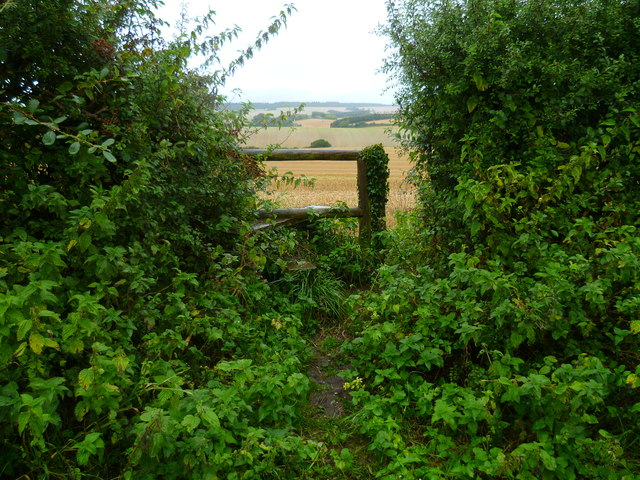The Orange Way in Wiltshire (80)