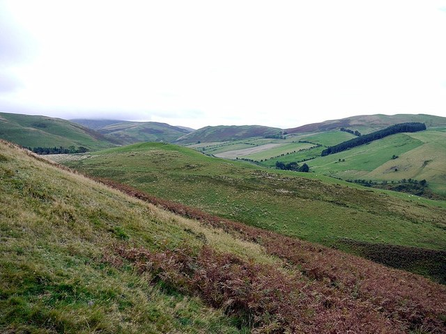 Shiel Knowe from slopes of Green Humbleton