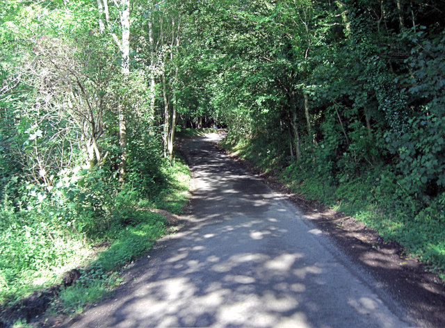 Unnamed lane within Larkethill Wood