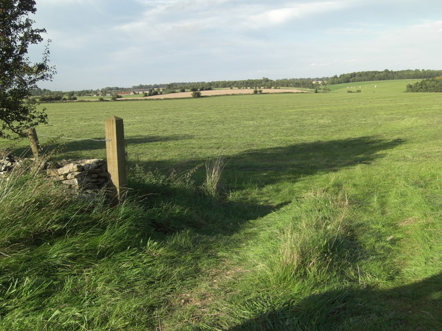 Silage field northwest of Wall Farm