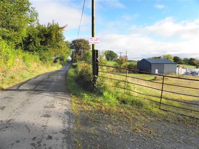 Road at Mullan
