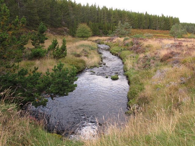 The River Lossie In Glen Lossie Forest
